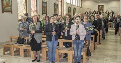 cvjetnica - cim 2019